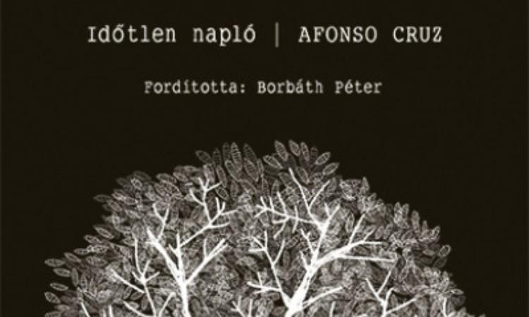 Afonso Cruz: Időtlen napló