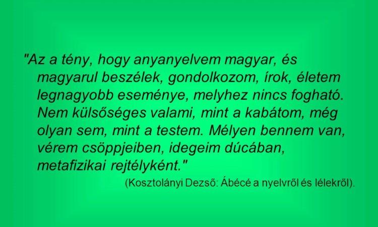 Anyanyelv nemzetközi napja - rendhagyó irodalmi órák kispesti iskolásoknak