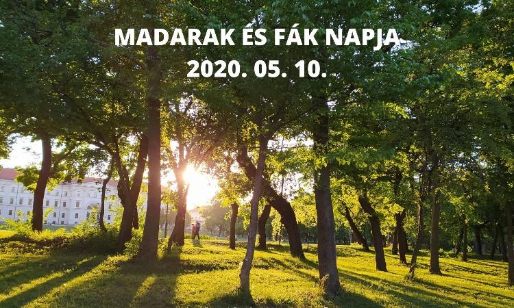 Aktuális kulturális - A madarak és fák napja /május 10./