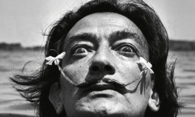 Salvador Dali: Egy zseni naplója