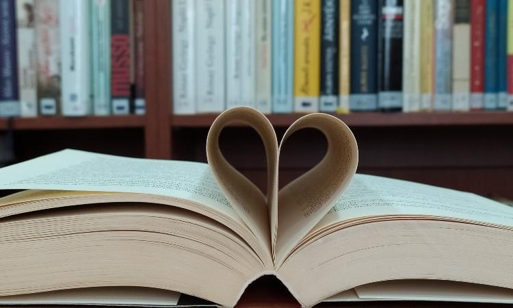Ünnepi Könyvheti könyvsoroló