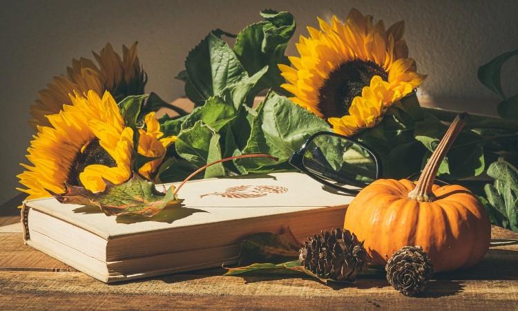 2020. évi október havi programok a Wekerlei Könyvtárban